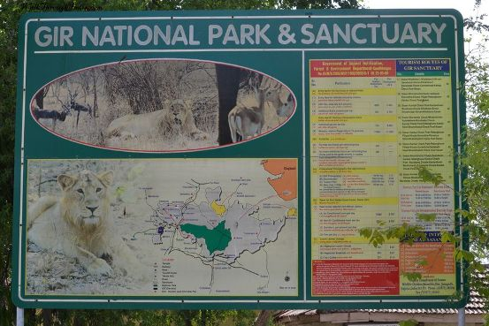 Information of Gir Forest National Park and Wildlife Sanctuary in Junagadh Gujarat India