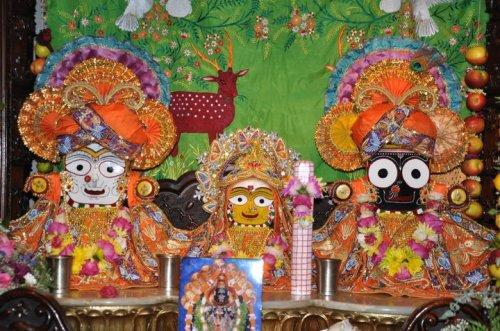 Jagannath Temple Ahmedabad Live Darshan