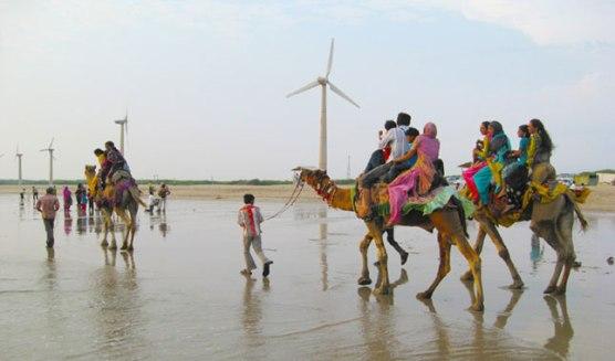Mandvi Beach in Kutch Bhuj Gujarat  Location Information of Mandvi Beach