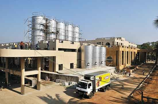 AMUL DAIRY ANAND Gujarat Products List Address  Contact Number