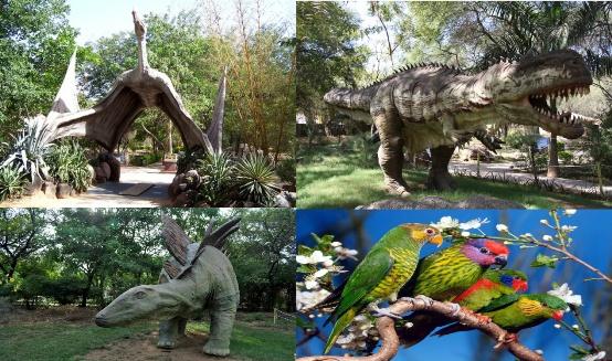 Indroda Nature Park in Gandhinagar Gujarat  Indroda National Park Address - Contact Number