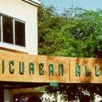 Epicurean Alley Restaurant in Ahmedabad – Offer Un Limited Lunch / Dinner