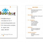 Boonbug Creation in Rajkot – Designing / Development / Marketing