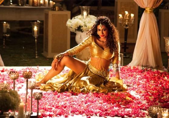 Chitrangada Singh New Hot Photos in Gabbar Is Back Movie