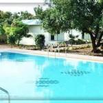 Saavaj Resort in Sasan Gir at Talala Road – The Resort Saavaj Address and Contact Number