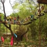 Orsang Resort in Vadodara –  ORSANG Gamdi Resort Chandod Near Baroda Address and Contact